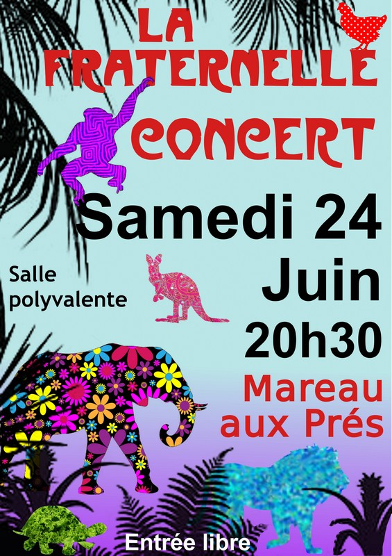 Affiche Concert ZooPsy 2017
